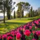 Venezia e i Colori della Laguna CATALOGO HAPPY 2019def Image 081 80x80